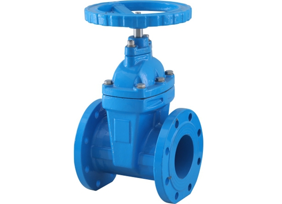 Elastic Seated Gate Valve 1