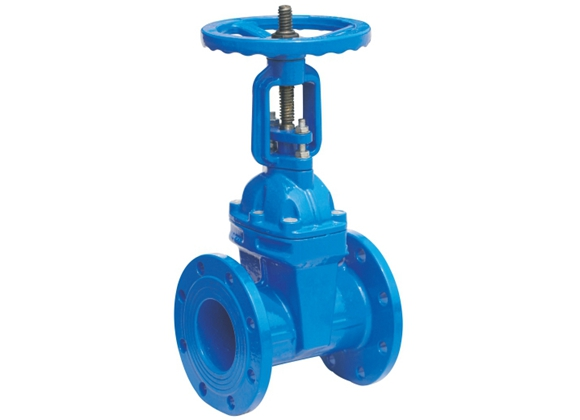 Elastic Seated Gate Valve 2